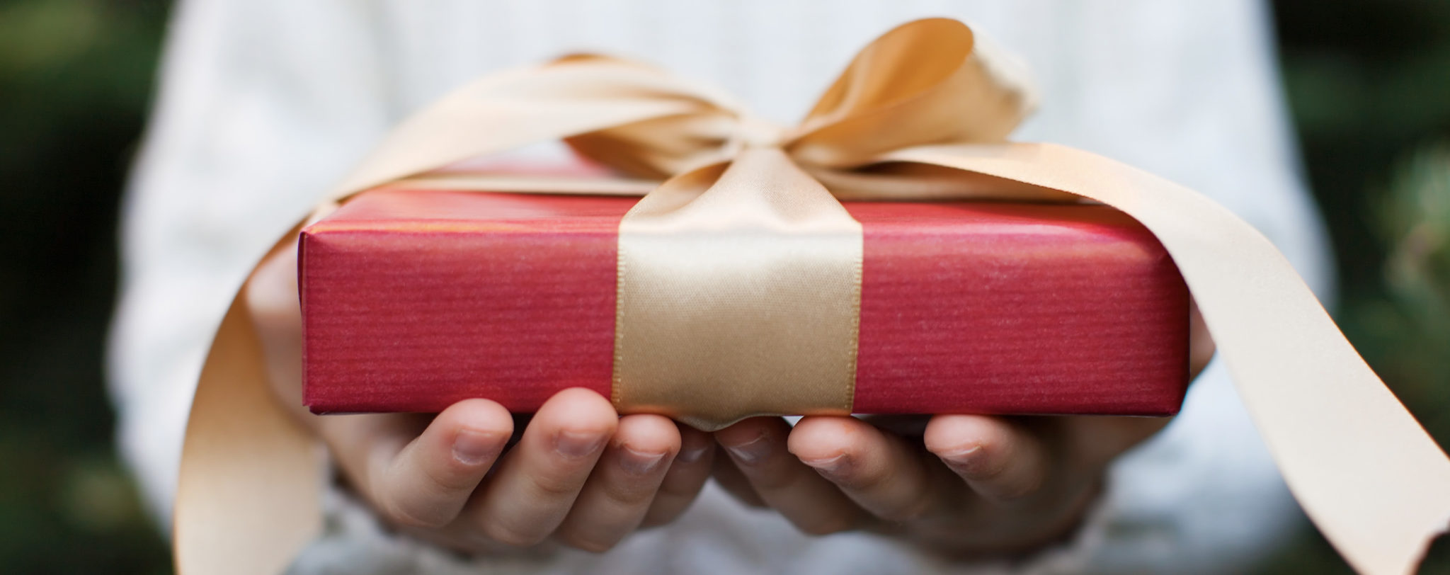 Top 7 Gifts for Healthy Holiday Giving
